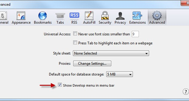 Mobile Test - Safari - Advanced tab (2)