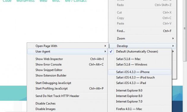 Mobile Test - Safari - Developer tab (3)